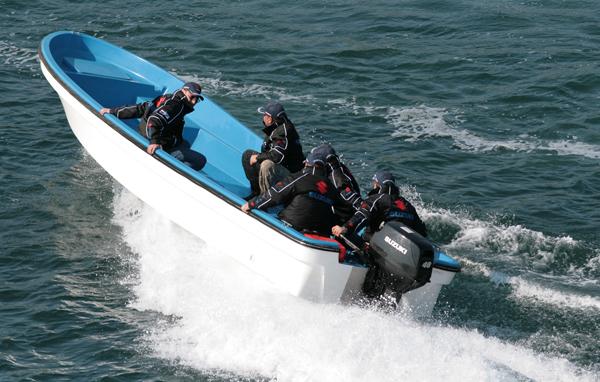 есть лодочные моторы и с румпельным и дистанционным управлением